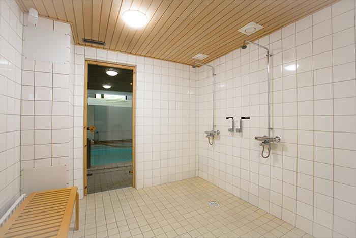Pähkinäsauna – Saunat.co
